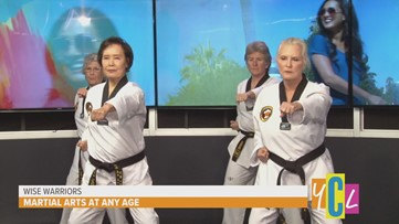 Wise Warriors: Martial Arts for Seniors