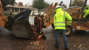 Leaf cleanup crews removing tons of debris daily in soggy cities