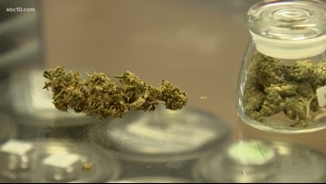 San Joaquin County proposes marijuana businesses for unincorporated parts of county