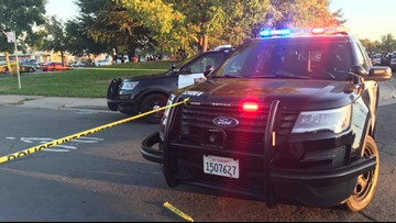 1 man dead after shooting in Sacramento's Rio Linda Blvd, North St area