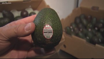 Are we really going to run out of avocados!?   VERIFY