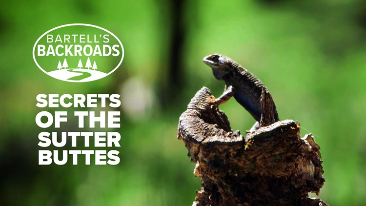 The Sutter Buttes, one of Northern California's best kept secrets | Bartell's Backroads
