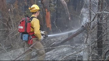 Cal Fire awards $43 million to fund 66 local fire prevention projects across the state