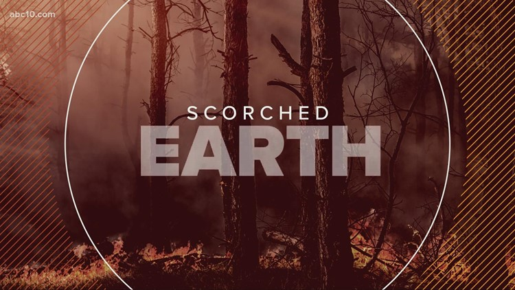 Drought and water conservation, what can you do to help right now? | Scorched Earth