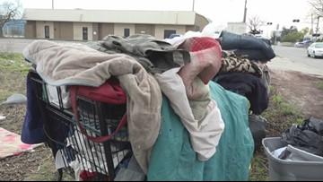 Modesto police begin shopping cart roundup to reduce blight around the city