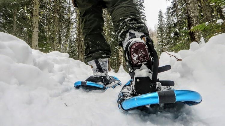 Snowshoes Generic