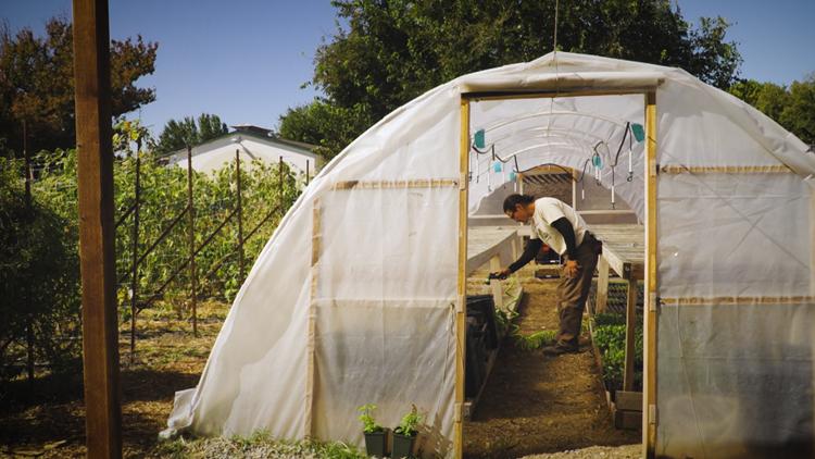 National Farmers Day: Meet the urban farmer giving back to the West Sacramento community