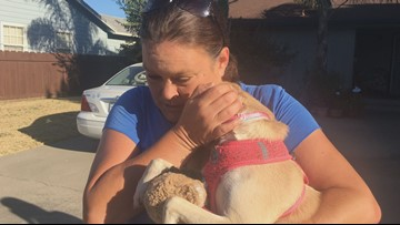 'I'm just so thrilled to have her back' | Stolen dog in Stockton reunited with family
