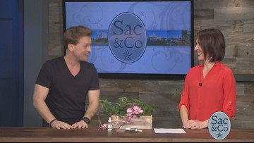 How to reduce the signs of aging: Sac&Co