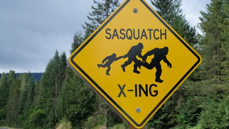 What we know about Bigfoot in California   National Sasquatch Awareness Day