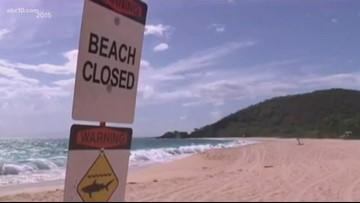 Granite Bay man killed by shark in Hawaii loved the water