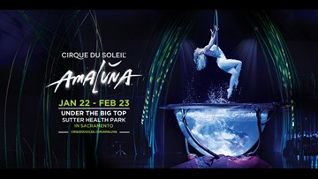 Cirque du Soleil: Plunge into a thrilling adventure filled with acrobatic feats and energetic sound...