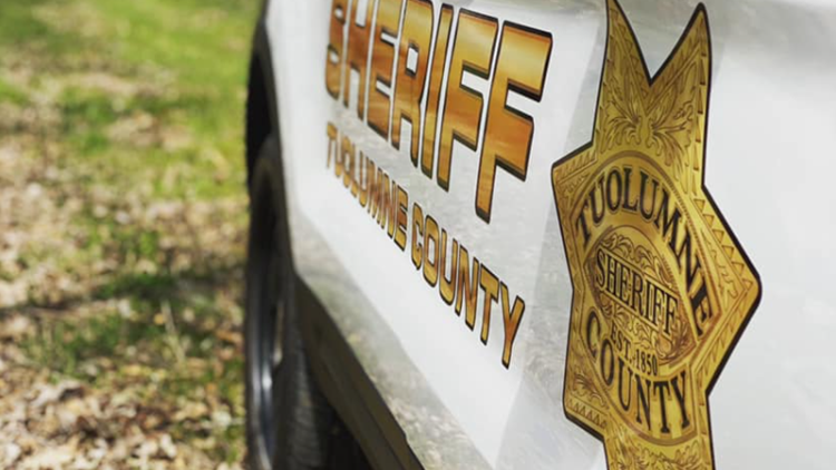 Taser, body restraint used during arrest at Tuolumne County park