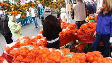 Mandarin Festival returns to Auburn   Need to Know