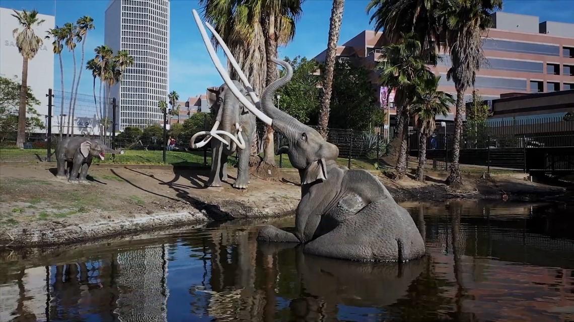 The beasts preserved in LA's La Brea Tar Pits | Bartell's Backroads