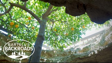 One man's American dream gave us an Underground Garden | Bartell's Backroads