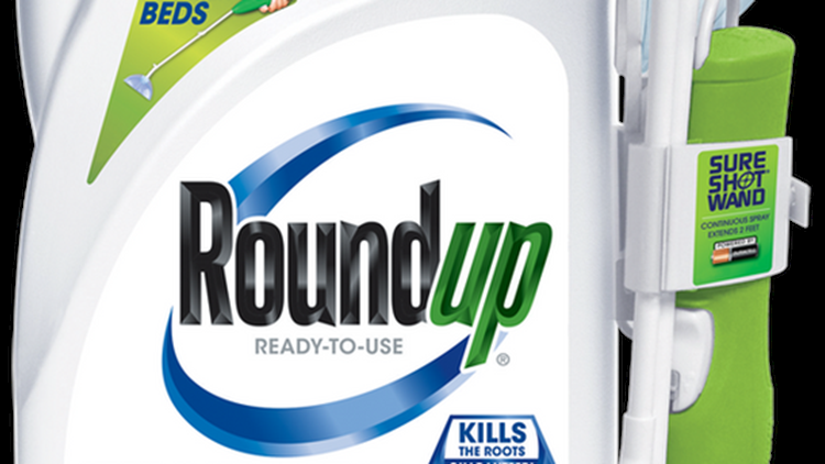 The school groundskeeper applied the Roundup weed killer up to 30 times per year as part of his job responsibilities. His doctors say its unlikely he'll live past 2020.