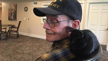 A Vietnam vet and a support cat formed an 'amazing' friendship at retirement home