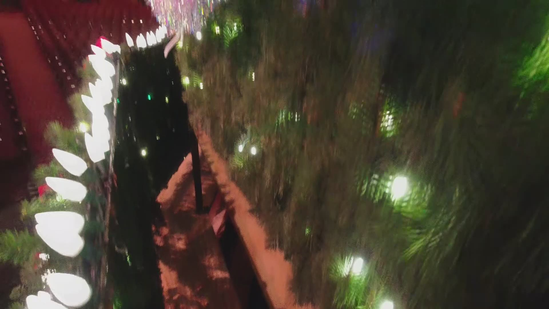 Singing Christmas Tree Youtube Sacramento 2020 Tree Monkeys' keep America's tallest singing Christmas Tree